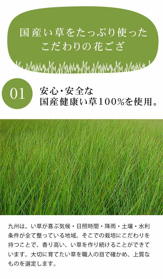 い草ラグ・カーペット 選べる13柄(190×190cm) ハーバス_詳細05