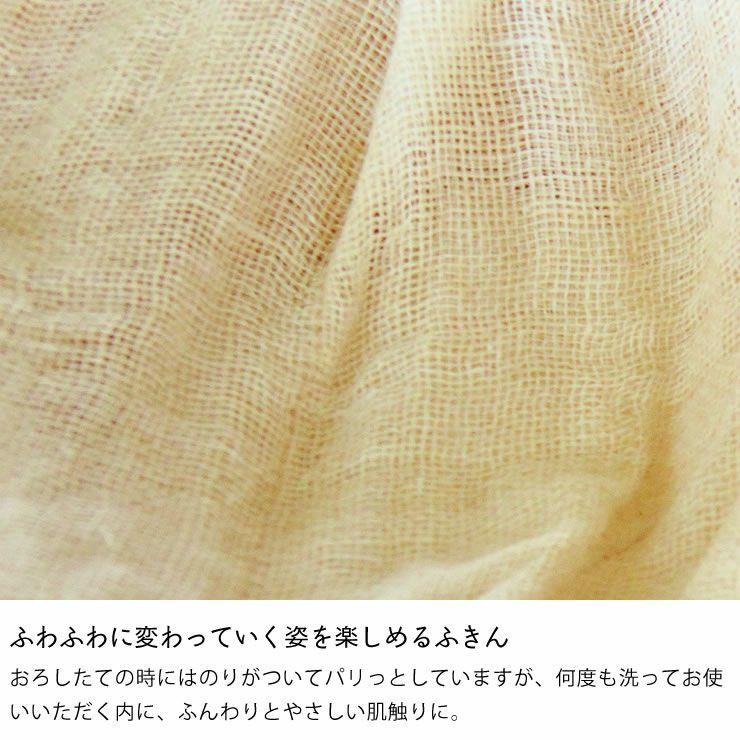 遊 中川パッケージ花ふきん(1枚)_詳細07