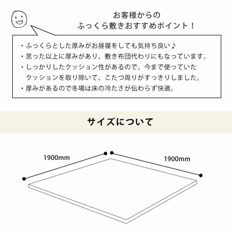 ふっくら心地良く暖かい敷き布団 190cm×190cm「正方形75~90cm」用_詳細11