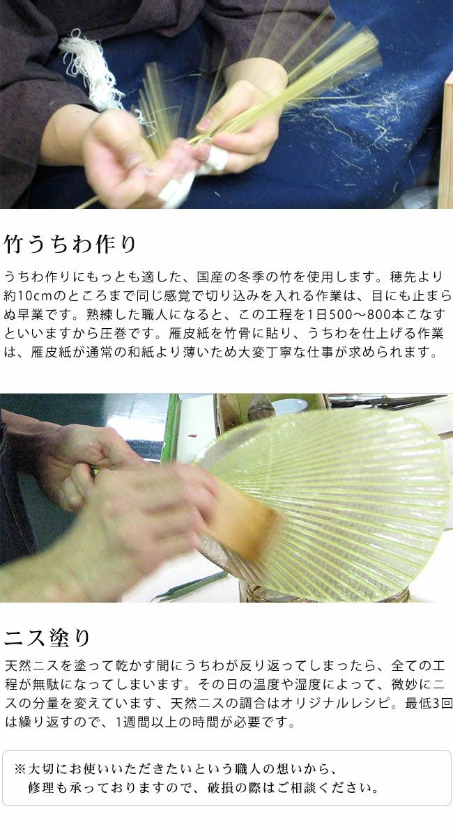 カミノシゴト(家田紙工)HIROCOLEDGE&Co.シリーズ水うちわ小判型(1枚)_詳細11