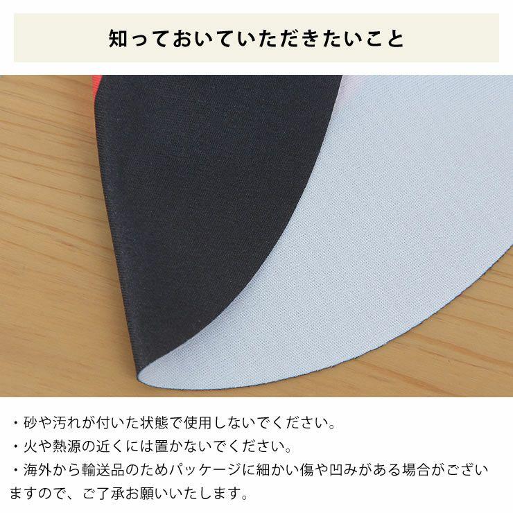 DONKEY PRODUCTS マイクロファイバークロスメガネ拭き_詳細12