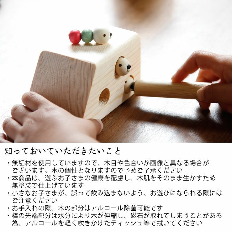 夢工房ももたろう木のおもちゃ「むしハウス」_詳細09